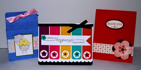 Stampin up Project pics 991