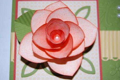 Paper Rose Up Close 2