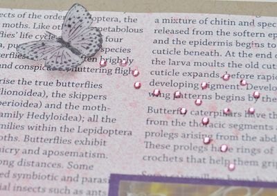 Fussy cut Vellum Butterfly