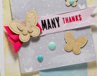 Many Thanks Card Add On Sneak