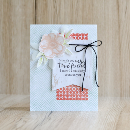 Fancy Friday March Full Card