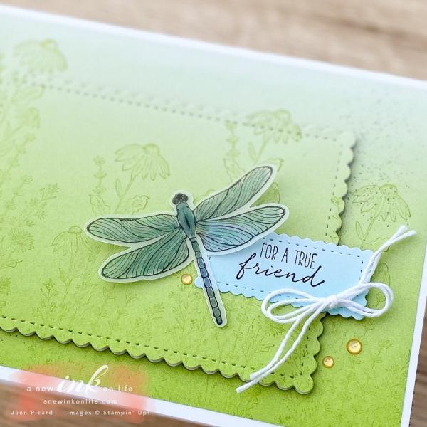 TGIF #303 Dragonfly Garden (2)
