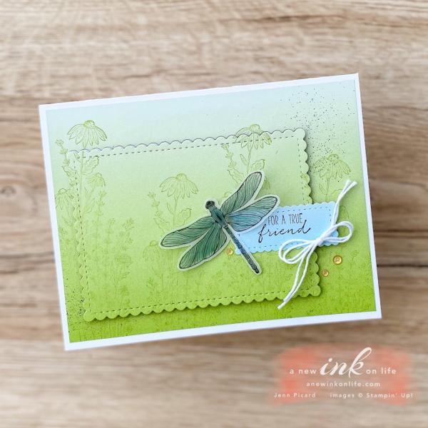 TGIF #303 Dragonfly Garden